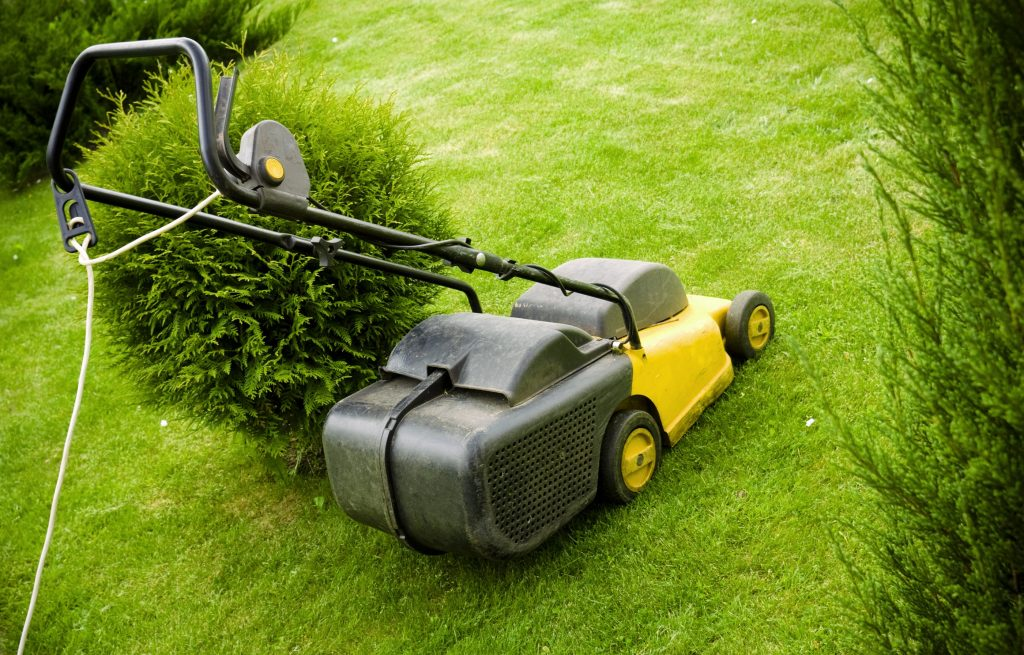 Corded rotary lawn mower.