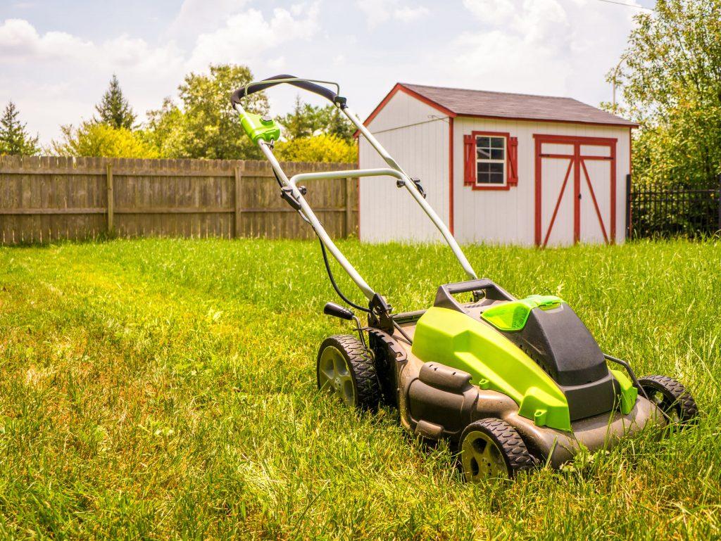 Cordless electric lawn mower.