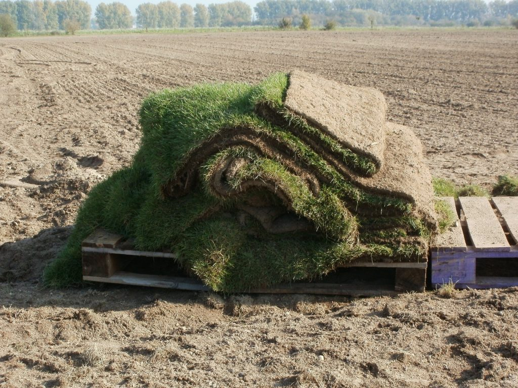 Grass sods used on a farm.