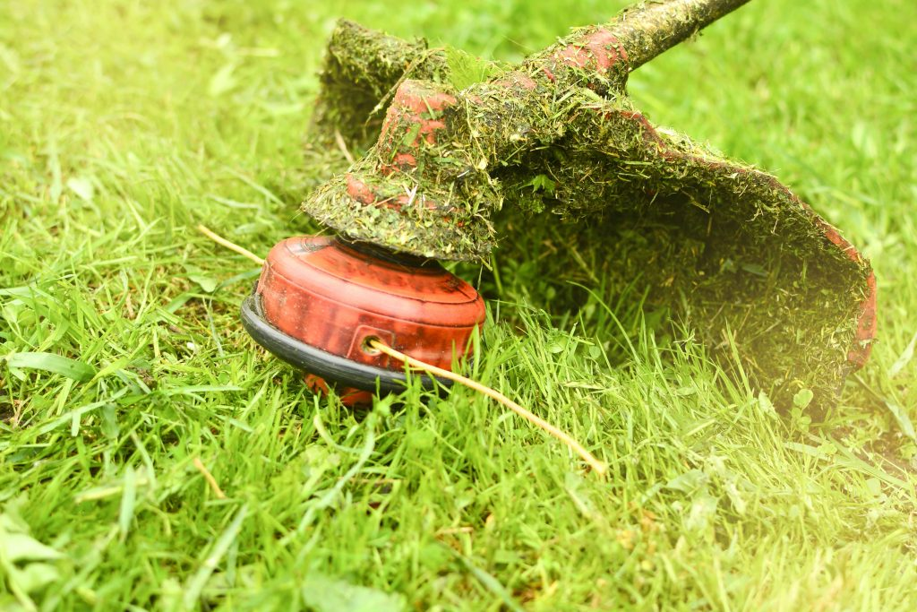 Grass strimmer resting on a lawn.