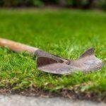 7 Best Lawn Edgers | Manual & Petrol Edgers | UK
