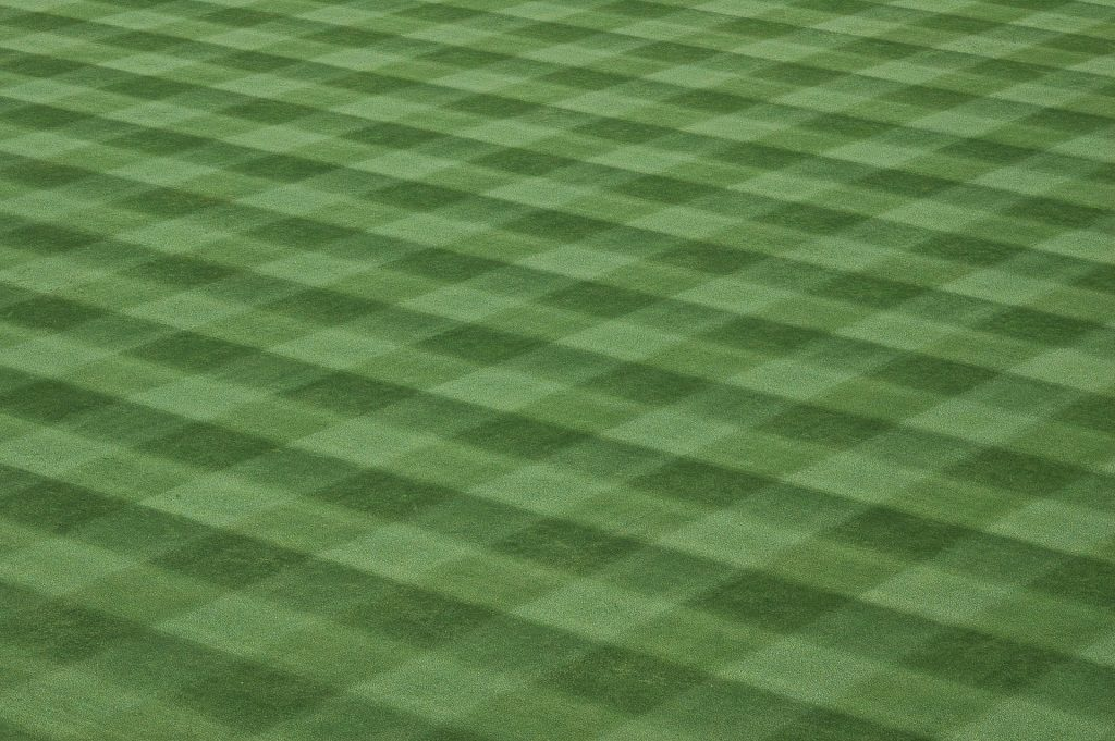 Lawn with a checkerboard pattern mown.