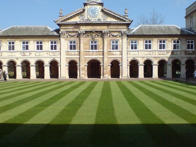 Lawn with stripes.