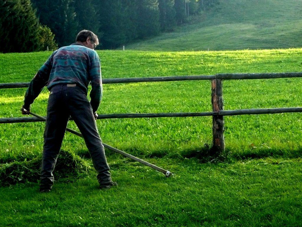 Man using a scythe to cut grass.