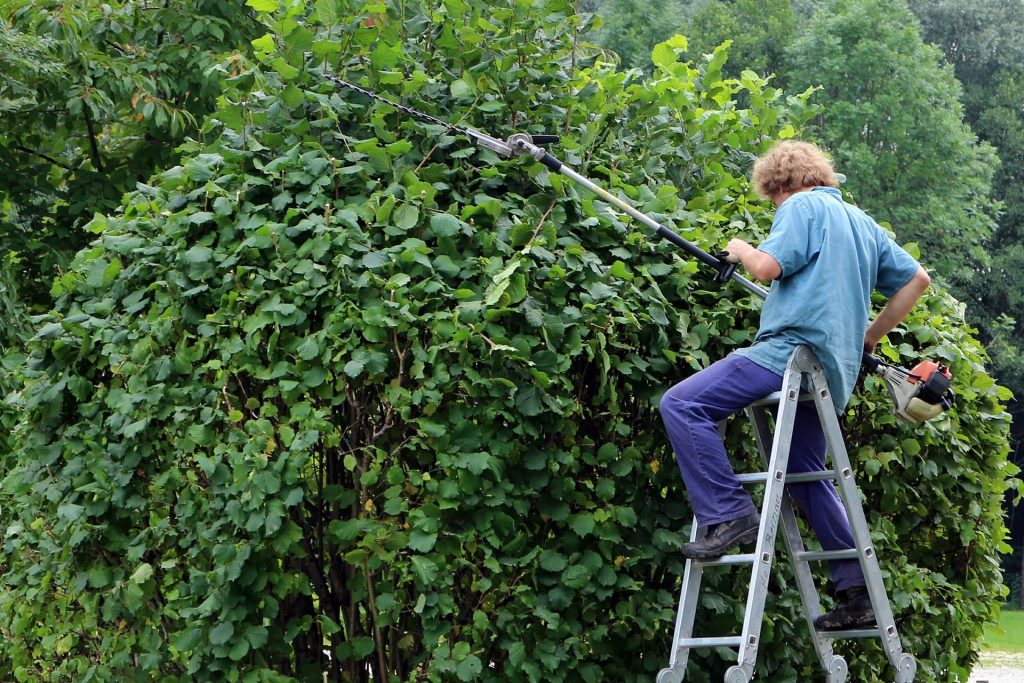 Man using a long reach hedge trimmer.