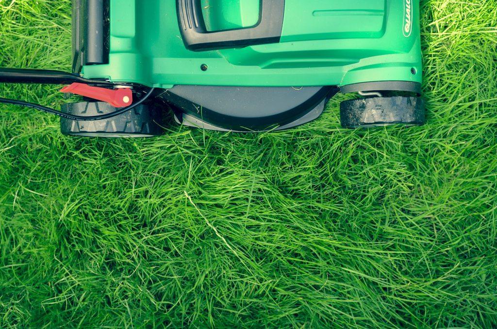 Mulching lawn mower.