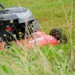 7 Best Mulching Lawn Mowers UK | Reviewed