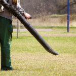 7 Best Petrol Leaf Blowers | Garden Vacuums | UK | 2021
