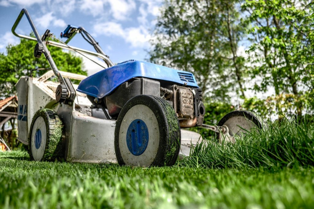 Petrol lawn mower cutting grass.