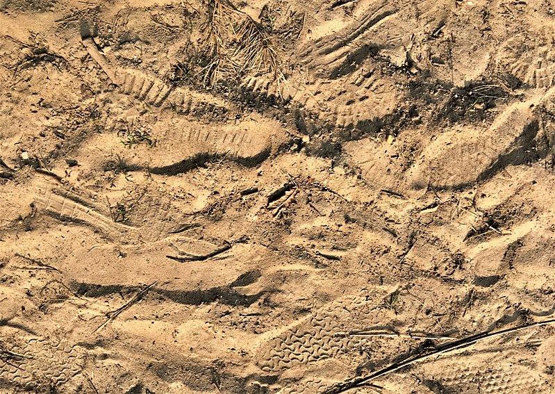 Sandy soil.