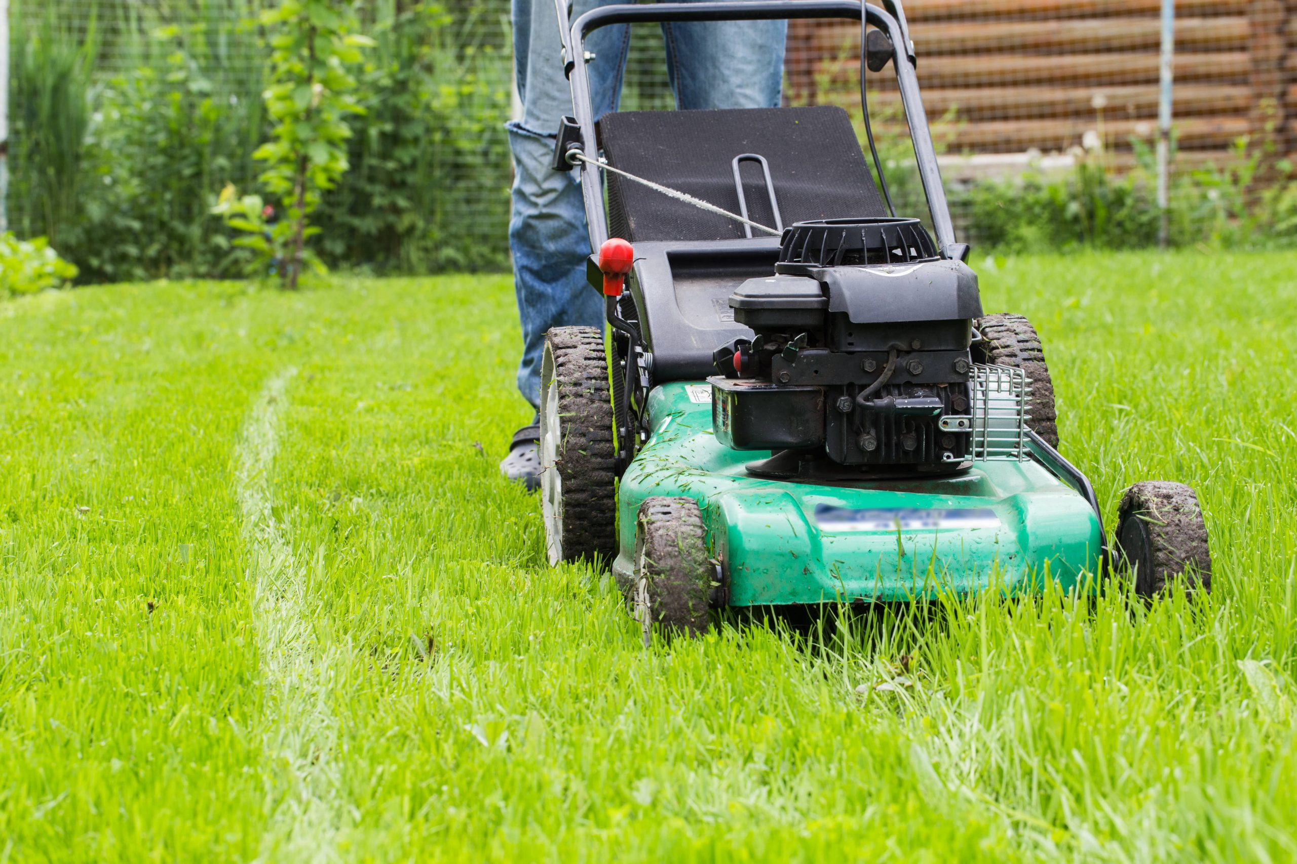 Self propelled petrol lawn mower.