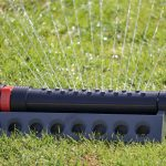 When To Water Grass: The Ultimate Guide   By Climate/Soil Type