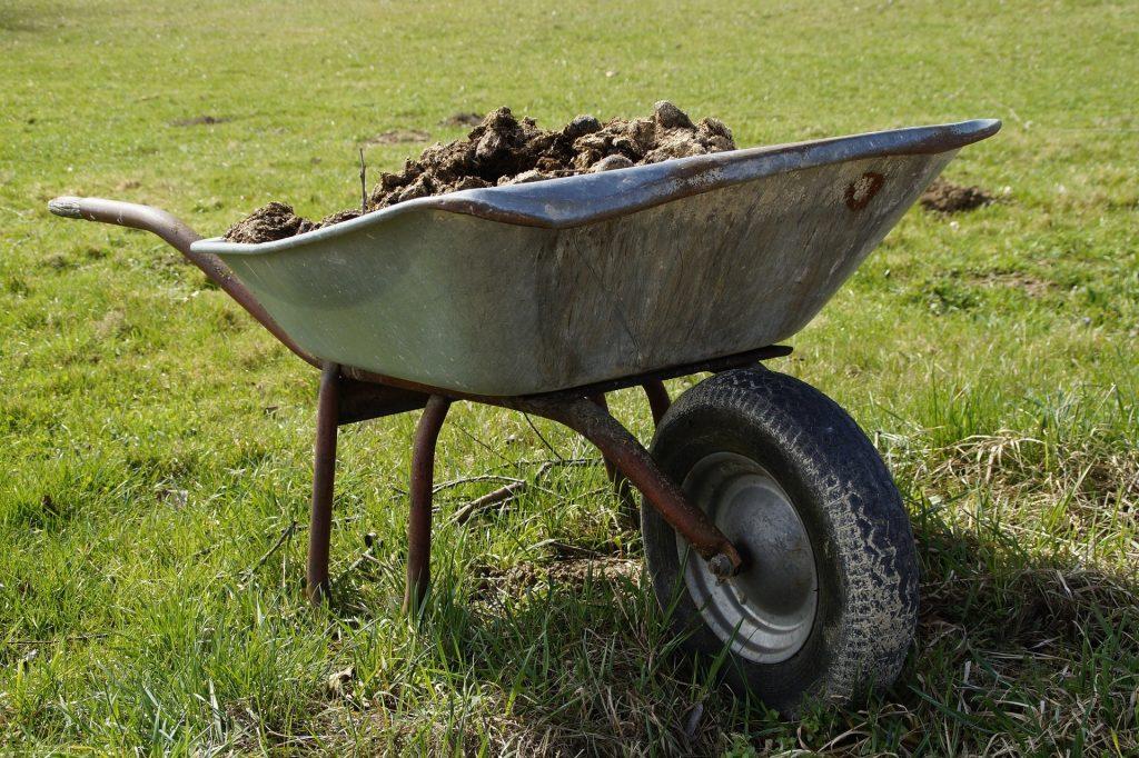 Wheelbarrows full of dirt.