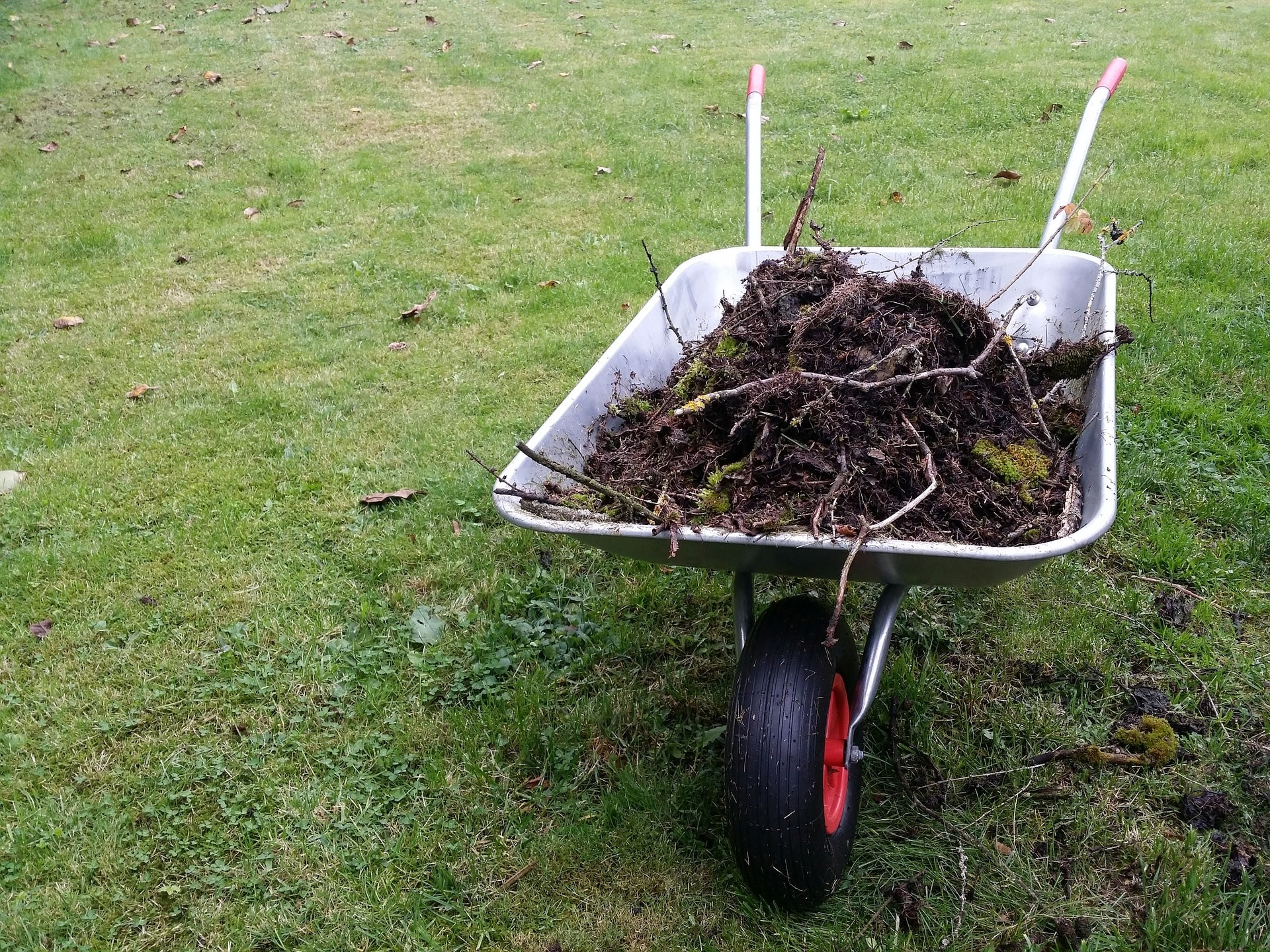Wheelbarrow full of logs and dirt.