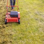 5 Best Lawn Scarifiers | Grass Rakers | UK | 2021